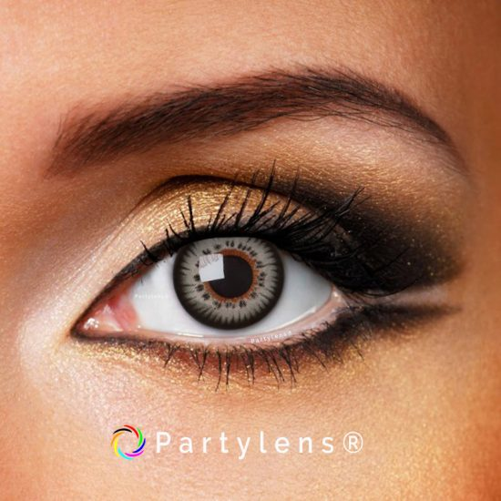 www.partylens.nl